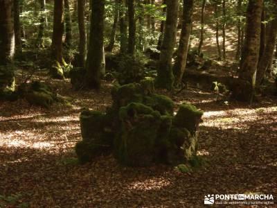 Parque Natural Gorbeia - Hayedo de Altube - Cascada de Gujuli;la garganta del cares tiempo sierra de
